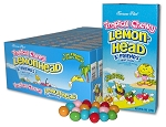 Tropical Chewy Lemonhead and Friends Movie Theater Size Candy, (Pack of 12)