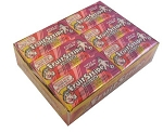 Fruit Stripe Bubble Gum Flavored Gum, (Pack of 12)