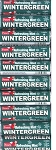 Foxes Wintergreen Mints, (Pack of 20)