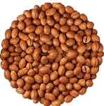 Roasted Unsalted Soy Nuts, (7 Pounds)