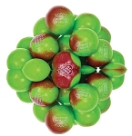 Dubble Bubble Apple Cinnamon One Inch Gumballs, (Pack of 850)